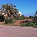 La zanja, vista desde la carretera de acceso a Mar de Cristal.