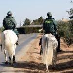La Guardia Civil refuerza su presencia en el Mar Menor con un escuadrón de caballería (imagen de archivo).