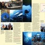 Parte del reportaje de cinco páginas que la revista británica Diver Magazine ha dedicado al buceo en la Región.