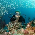 Los clubes de buceo han organizado unas jornadas para dar a conocer los fondos marinos regionales.