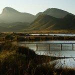 Una pasarela financiada por la Obra Social de Caixabank permitirá observar especies autóctonas en Calblanque.