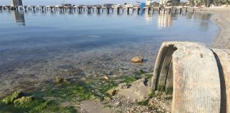Los vertidos al Mar Menor y toda su problemática asociada se debatió en el último Pleno del Ayto. de San Javier