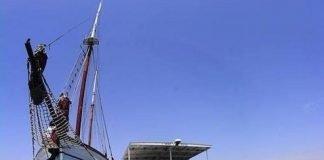 WWF y ANSE realizaron hace poco un vídeo divulgativo sobre el lamentable estado de las aguas del Mar Menor