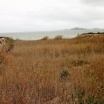 El viento y no los vertidos de la agricultura es la causa de la turbiedad del Mar Menor, según la Comunidad
