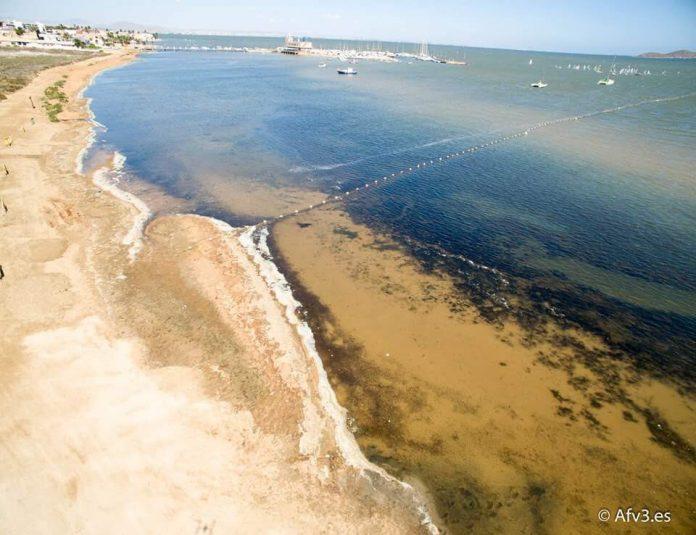 La playa de Estrella de Mar, junto a los Urrutias, es la primera playa cerrada por fangos en el Mar Menor este verano.