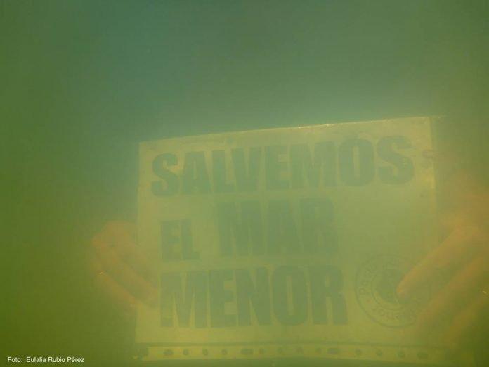 Imagen tomada por la plataforma Pacto por el Mar Menor en el zona norte de la laguna, a un metro de profundidad; el cartel se encontraba a 30 cm de la cámara.