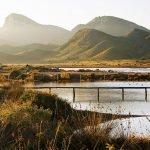 Una empresa privada limpiará las playas de Calblanque el próximo 17 de septiembre.