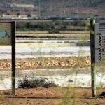 """El lamentable estado de abandono de las Salinas de Marchamalo no impide que la CARM siga organizando visitas guiadas para conocer """"la riqueza"""" de sus humedales."""