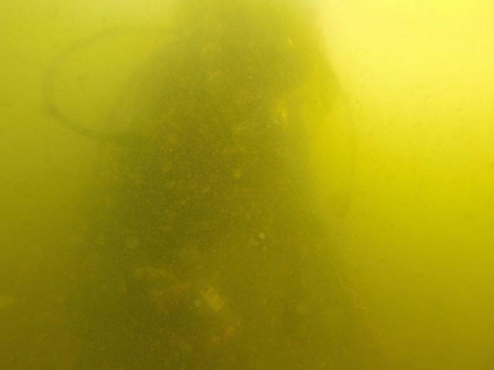 Imagen de la turbiez presente en el Mar Menor y continuamente denunciado por asociaciones ecologistas y vecinales.